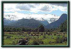 La  Tierra del Fuego (Patagonia) en peligro